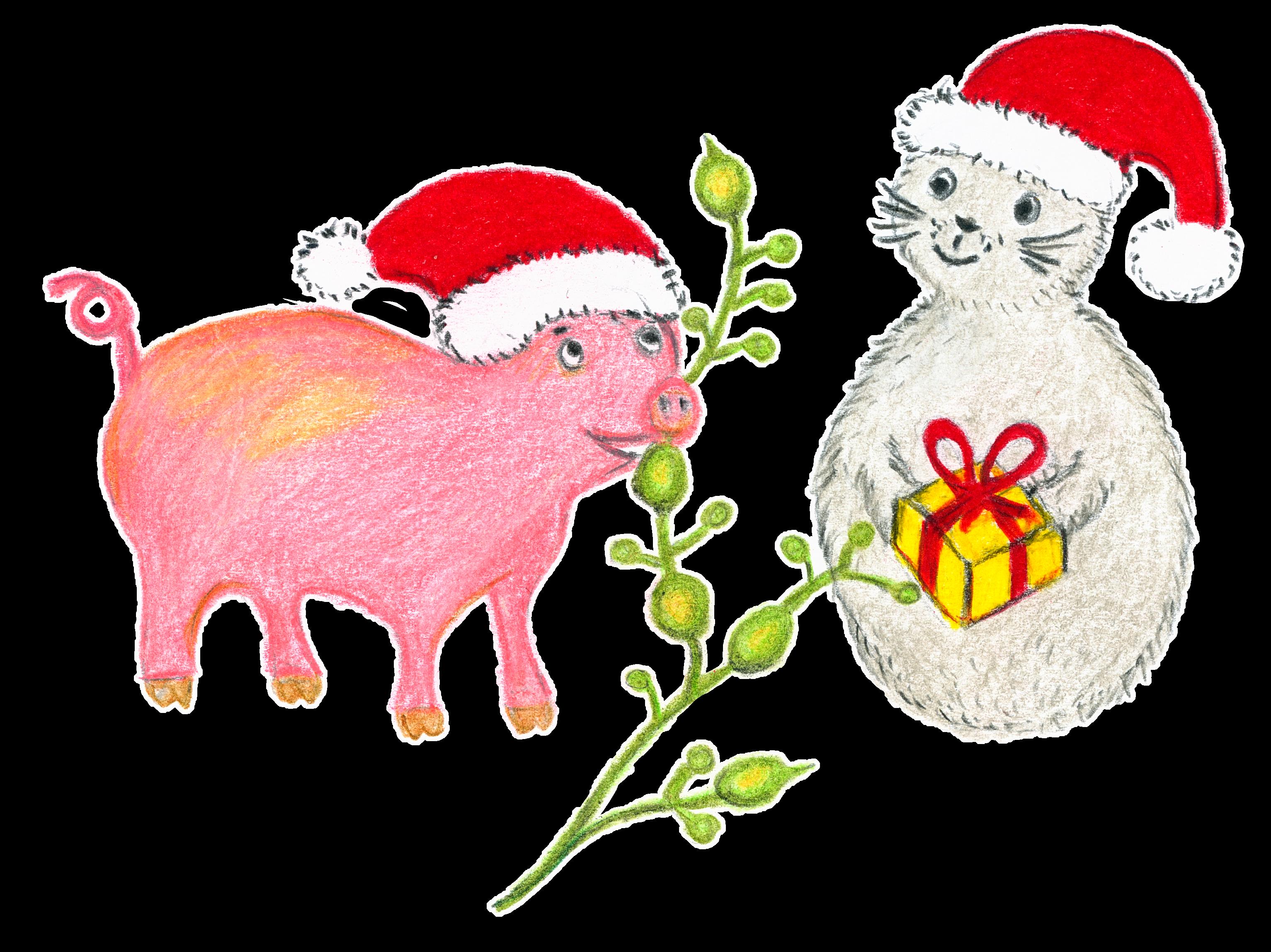 Noriko och grisen äter knöltång (Ascophyllum nodosum), även kallad gristång